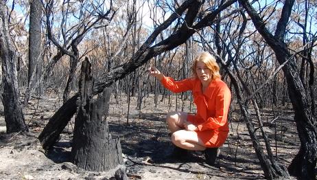 Red Dress Burnt bush